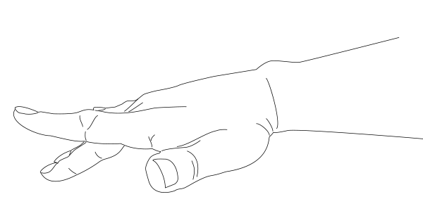 Crane's Wing Hand Form