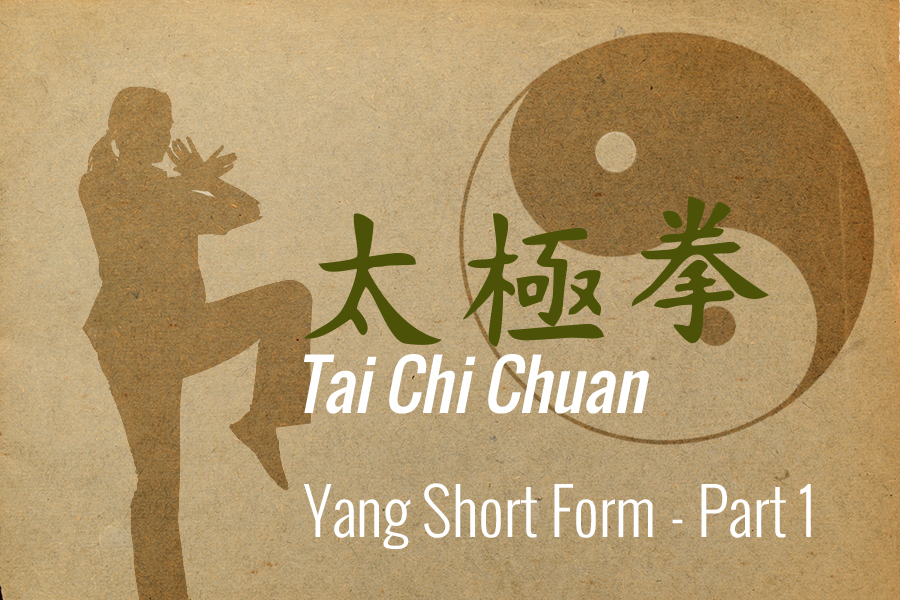 Tai Chi: Yang Short Form - Part 1