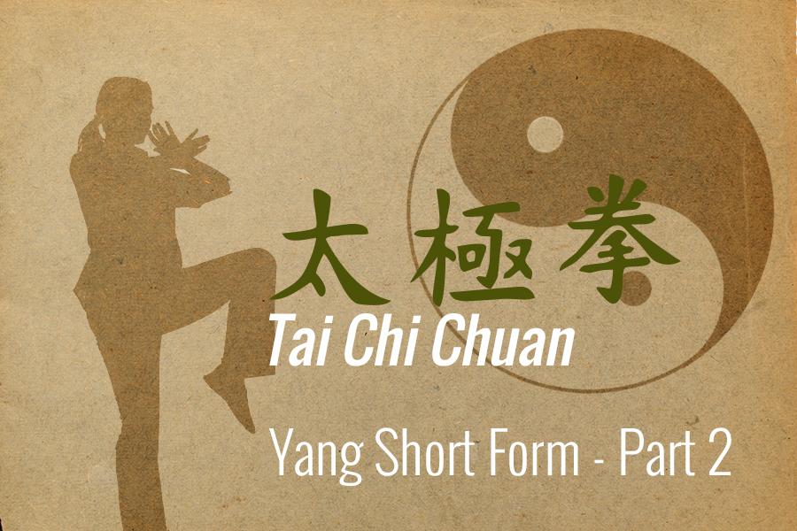 Yang Tai Chi Short Form - Part 2